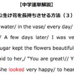 【中学速単解説】⑫生け花を長持ちさせる方法(3)解読のポイント