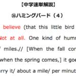 【中学速単解説】⑯ハミングバード(4)解読のポイント